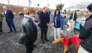 Tamaraceite: El Parque Isabel Macario Brito dedica un 10% de su...
