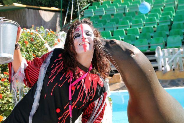 Los leones marinos de Terra Natura Murcia también son cariñosos con los zombies :-) ¡¡¡que mono!!! #leonmarino