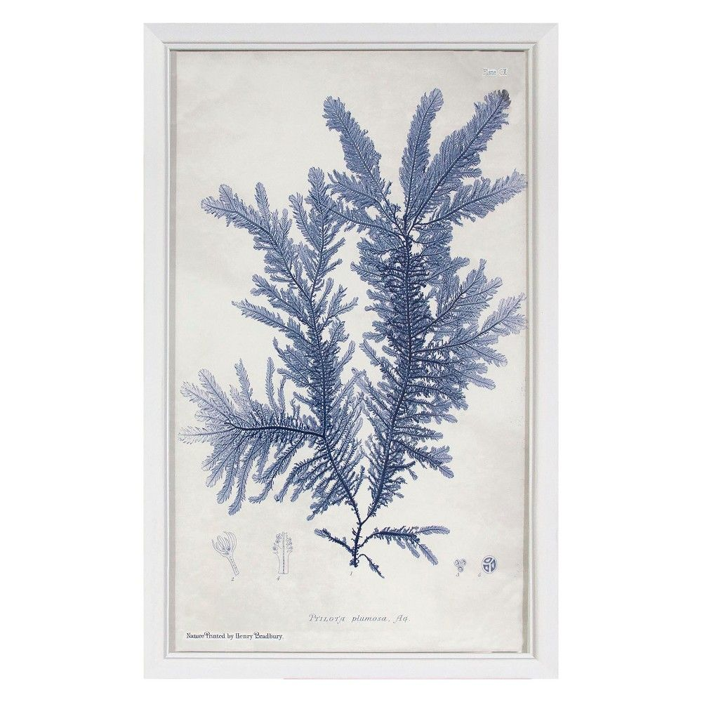 Blue Coral Plant Framed Wall Art Threshold Products in
