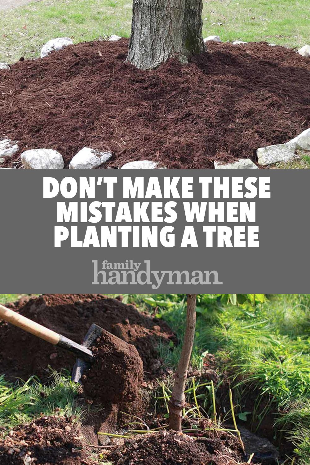 Don T Make These Mistakes When Planting A Tree Landscaping Around Trees Plants Trees To Plant