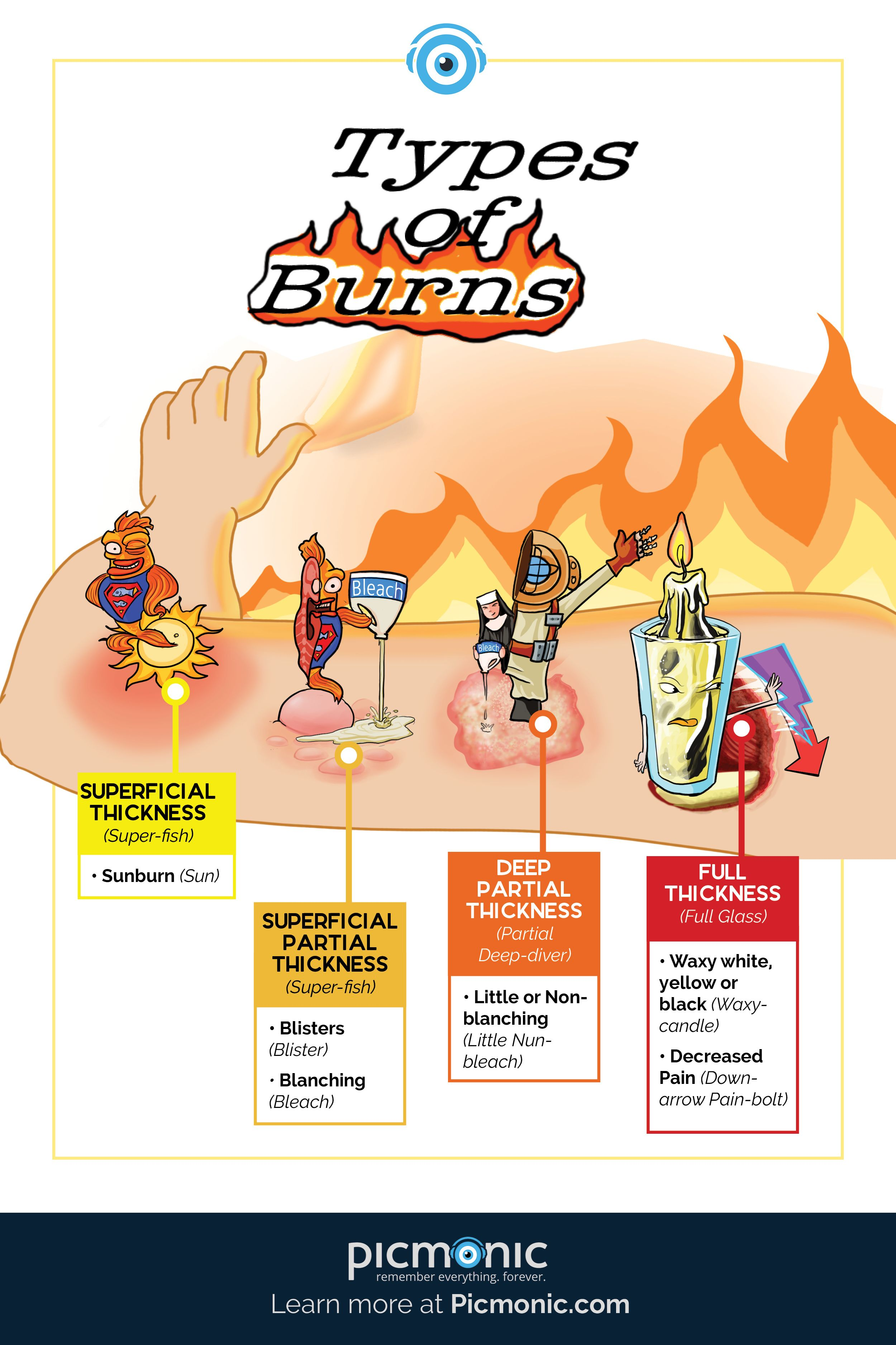 Burn Injuries Involve The Destruction Of The Integumentary