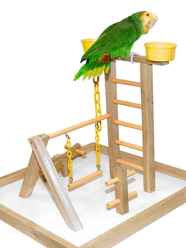 Details about Parrot Perch Pet Bird Play Gym Stand Table