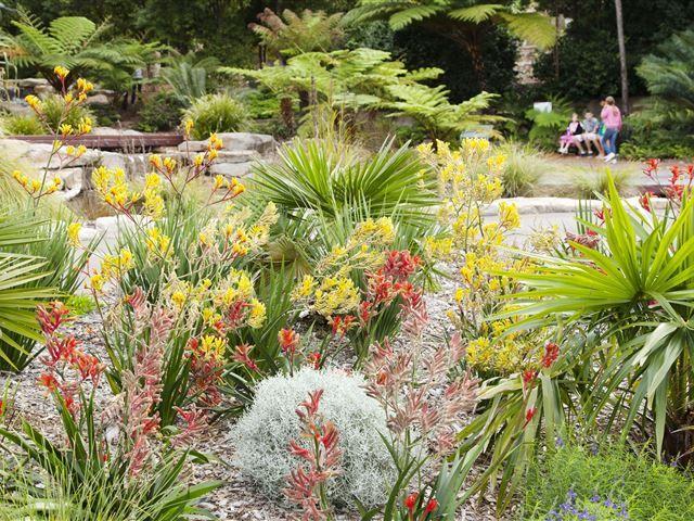 bfd5965c8c5966f012ef8e886d82116f - Where Is Mount Annan Botanic Gardens