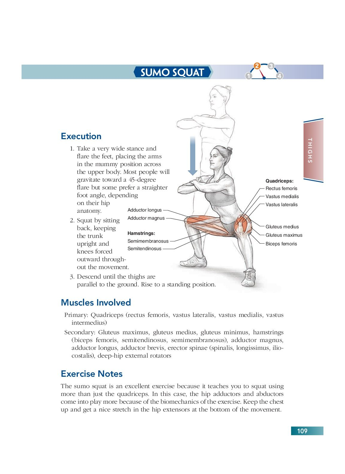 Chapter 7 Thighs (109) | Bodyweight Strength Training Anatomy ...