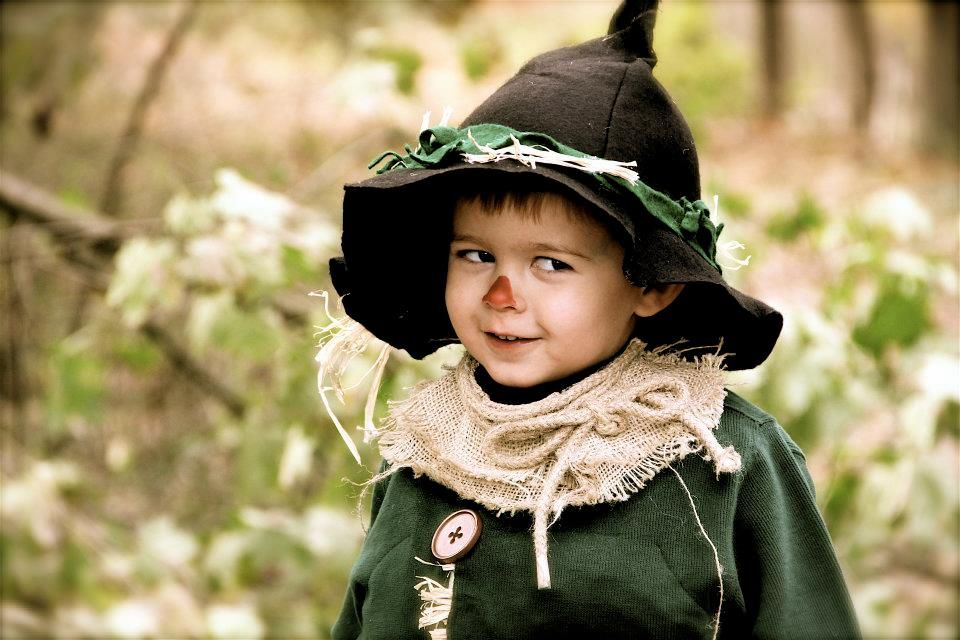 Pin by Lucie Bellemare on Cottage On Friendship Lane Pinterest - scarecrow halloween costume ideas