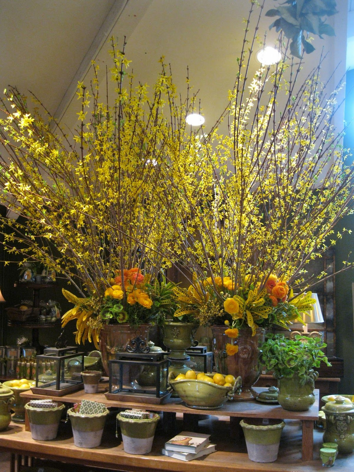 Rogers Gardens held their Spring event and the kick off of their ...
