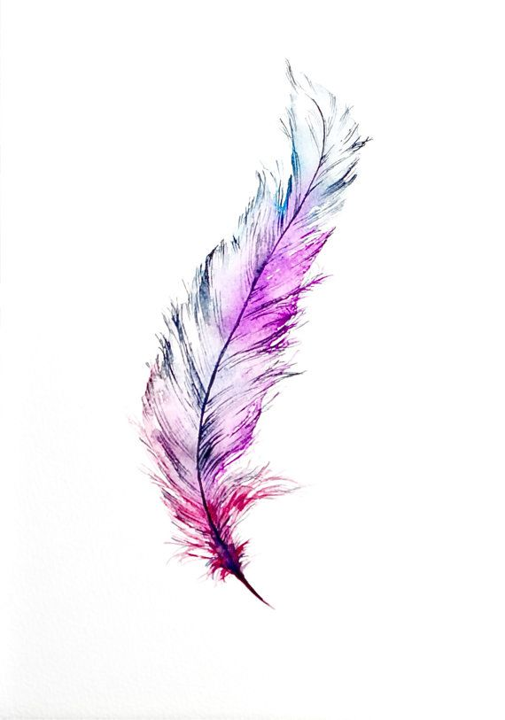 watercolour feather design pinterest watercolor