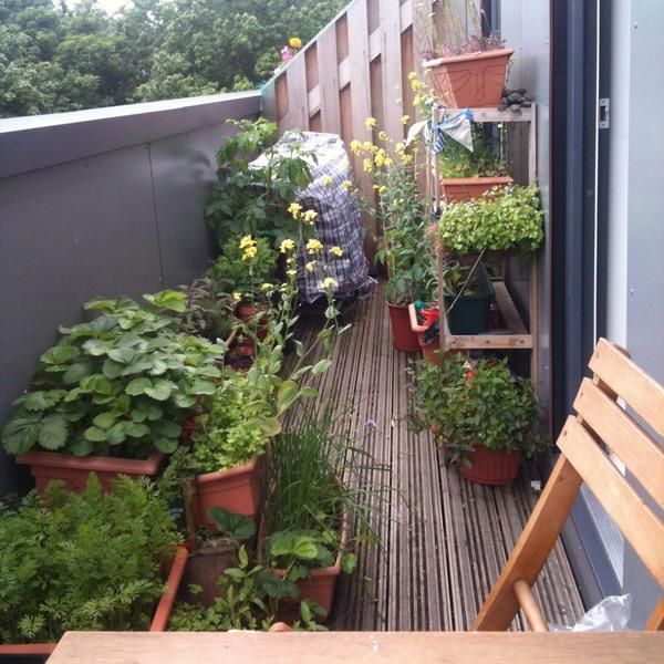 33 small balcony designs and beautiful ideas for for Plants for apartment balcony