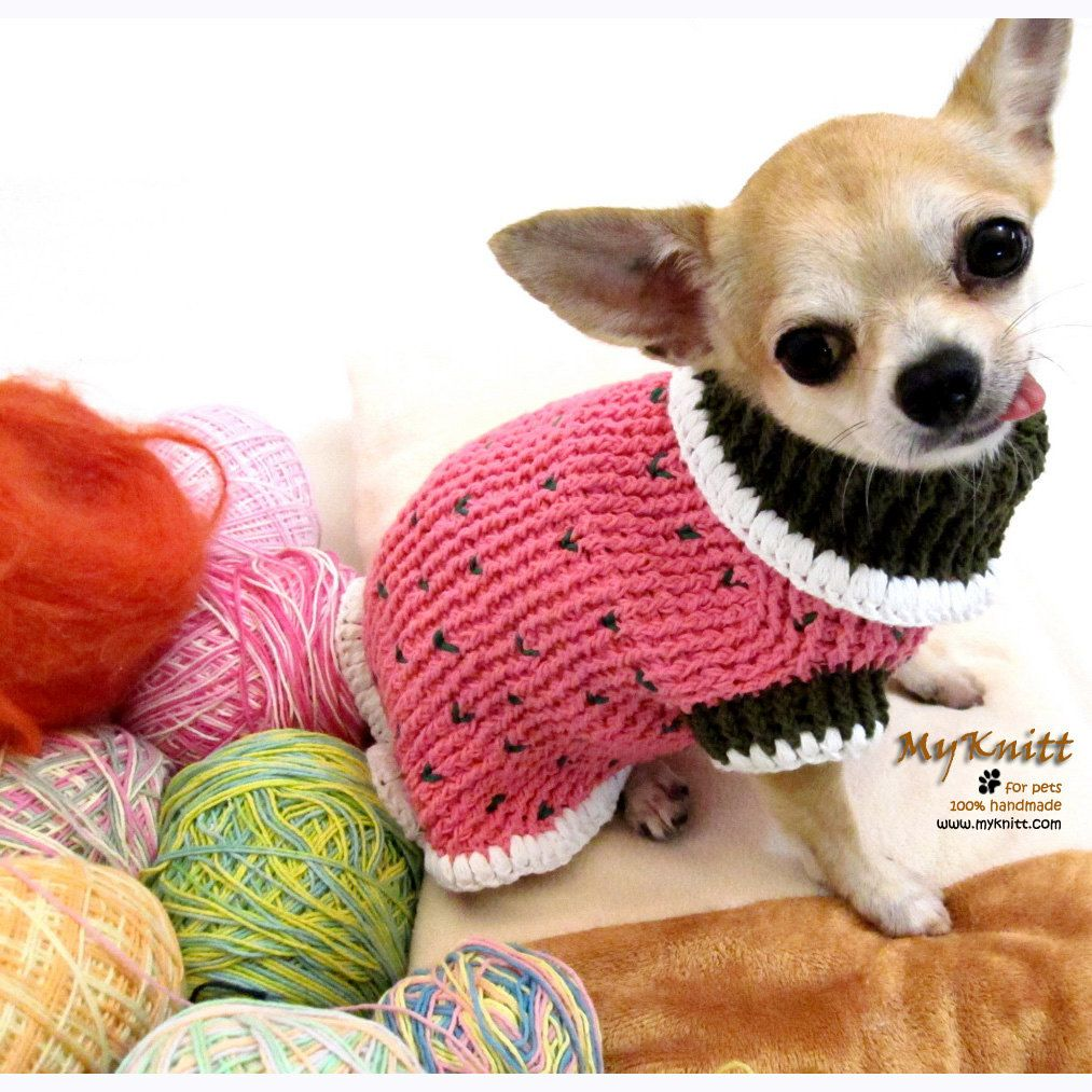 Pink Olive Dog Sweater Hand Crochet Clothes Pet Clothing Chihuahua