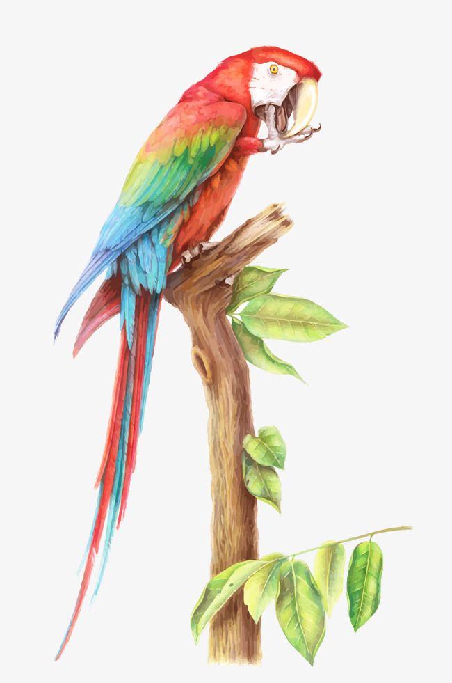 Pin de Diana Milegoc en animales & pintura | Pinterest | Pintar ...