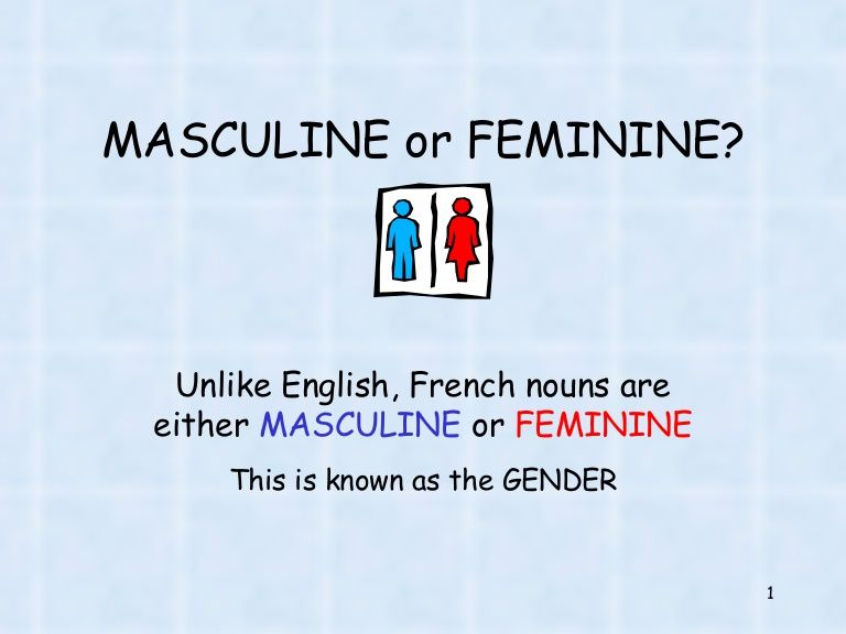 How To Find Out When Nouns Are Masculine Or Feminine In French French Nouns Masculine French