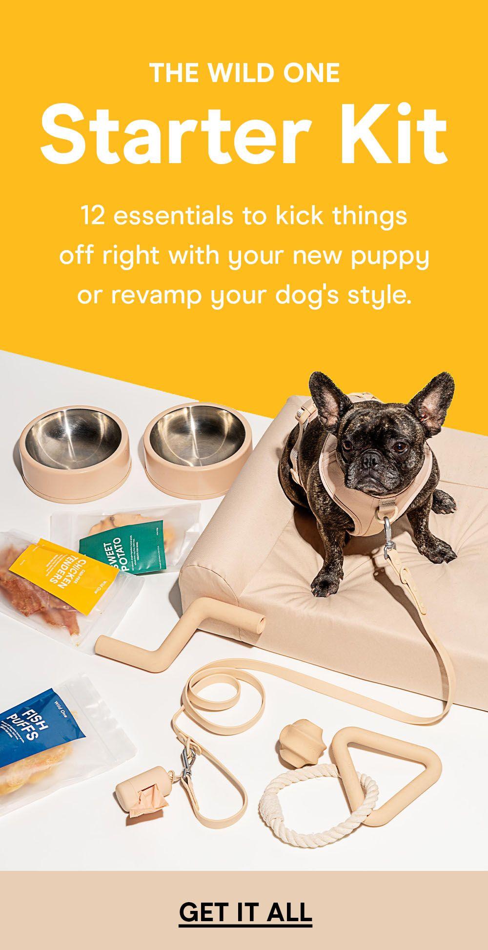 Starter Kit Dog Training Books Training Your Dog Dog Training