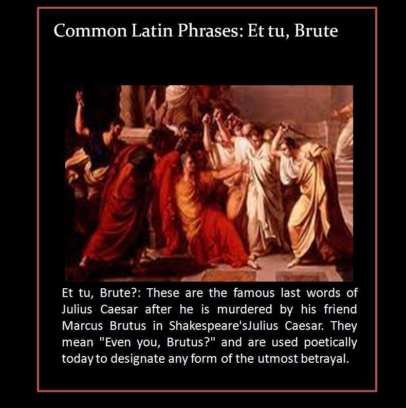 brutus betrayal
