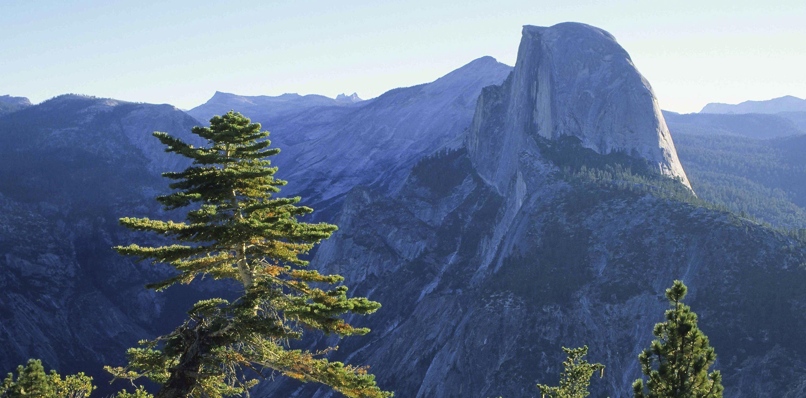 Thanksgiving Weekend Evergreen Lodge Yosemite Cabin Yosemite Summer Road Trip
