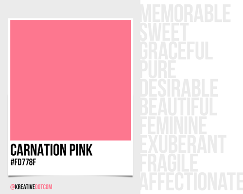 How Does The Color Carnation Pink Fd778f Make You Feel What Emotions It Evoke In Design