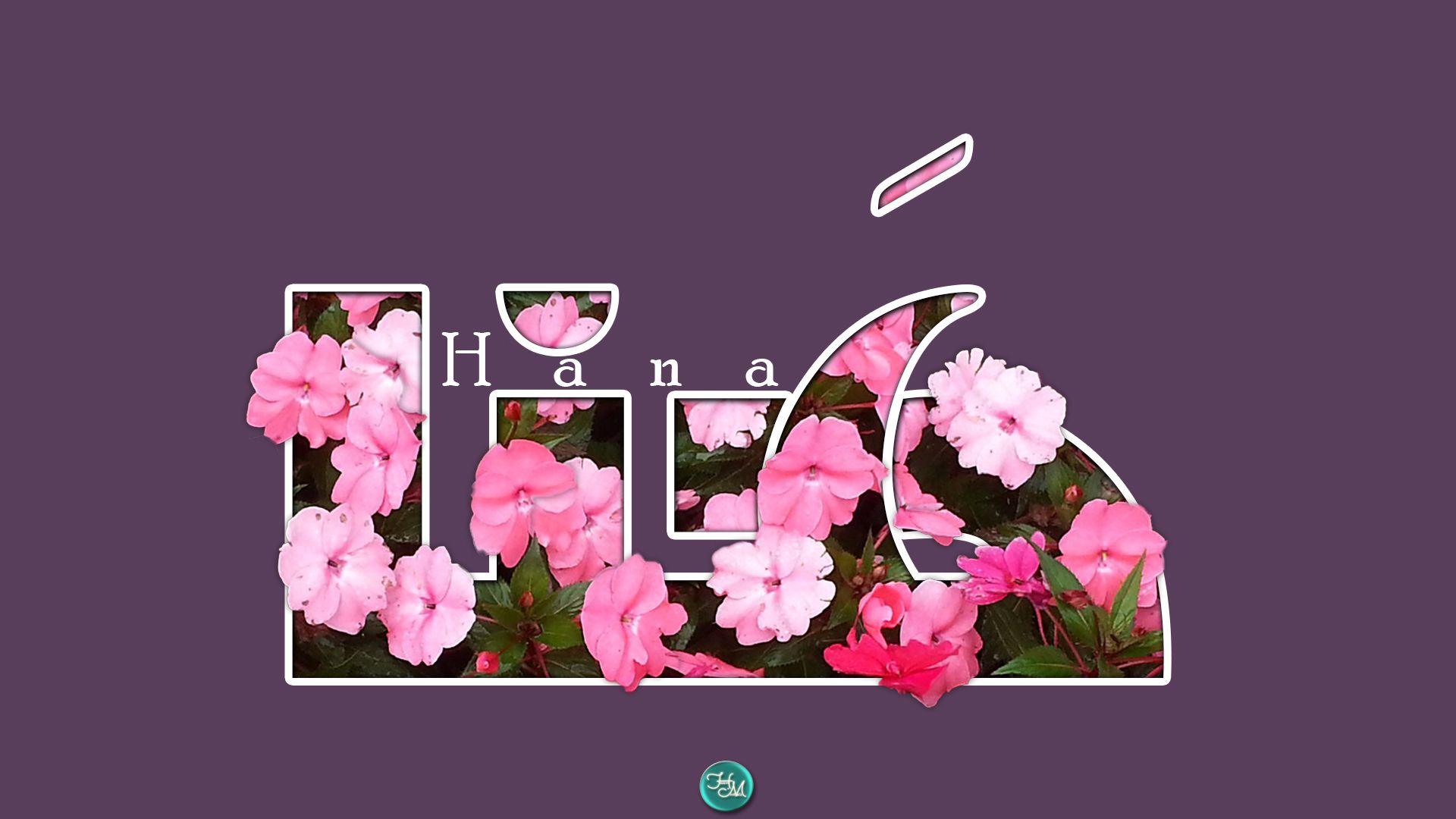 ه نا اسم علم مؤنث عربي معناه الفرح السعادة وح ذ ف ت الهمزة للتخفيف من أصل هناء ويبقى المعنى عليه هنا Hana Poster Arabic Quotes Movie Posters