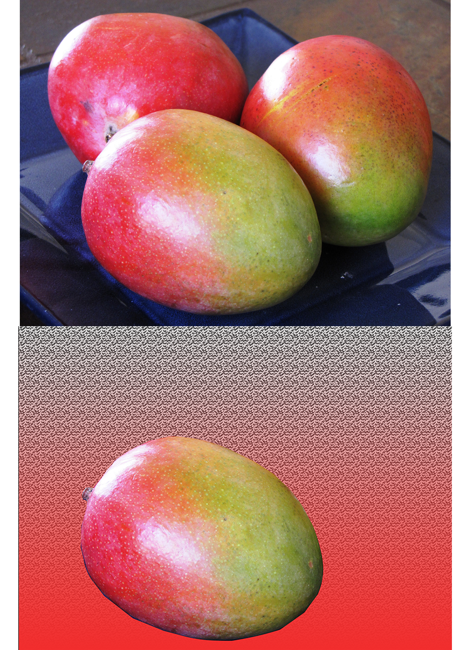 The mango image shows the process in making a selection