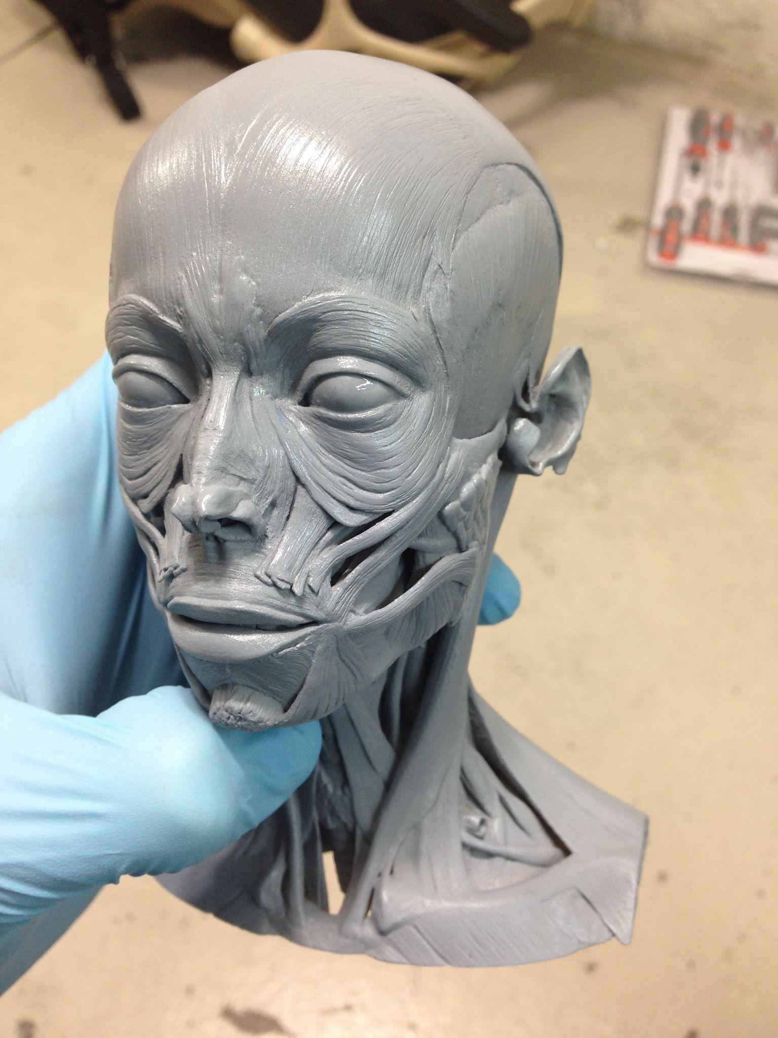 1398068_603724036347846_1354049673_o.jpg (1536×2048) | Sculpture ...