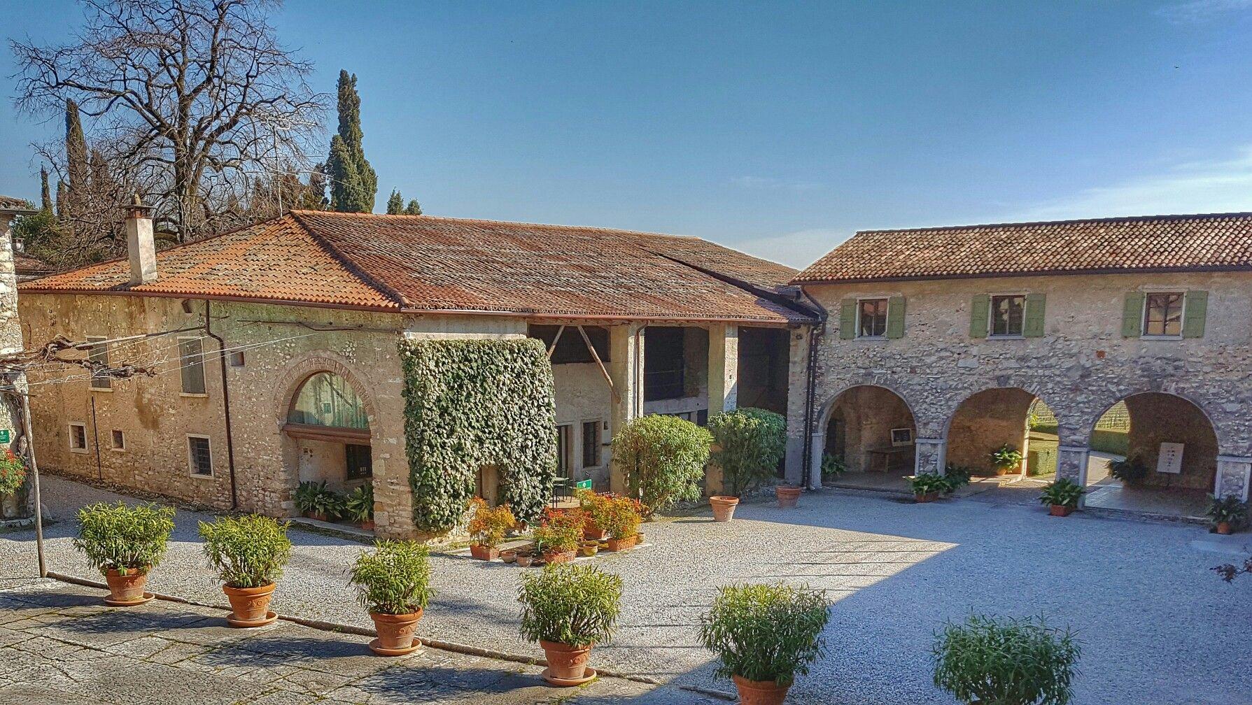 Corsi #WSET #Verona #Valpolicella per ulteriori informazioni si prega visitare il nostro sito web wineacademyitalia.com