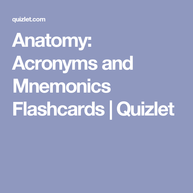 Anatomy Acronyms And Mnemonics Flashcards Quizlet Anatomy