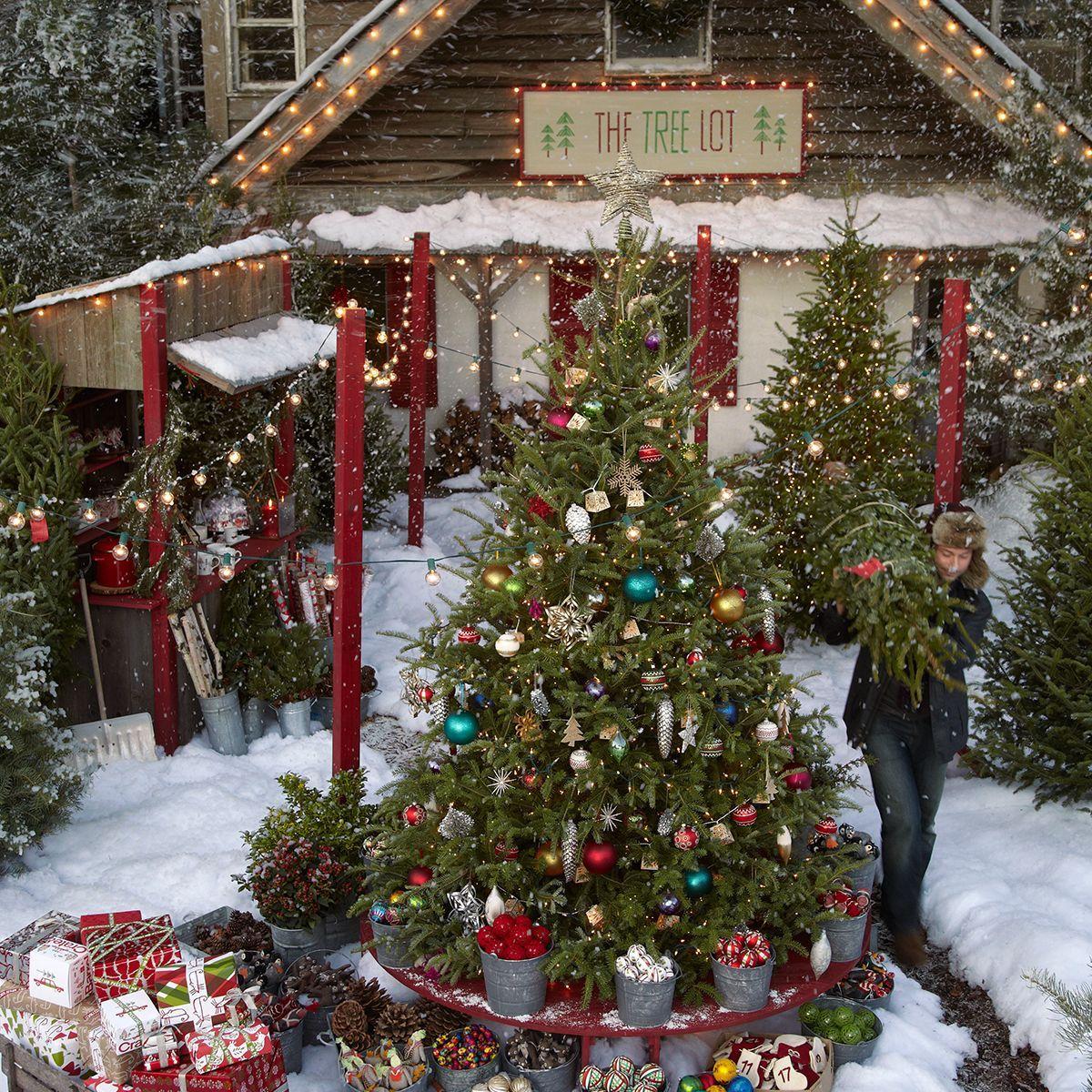 Take A Trip To The Treelot Christmas Tree Lots Christmas Tree Farm Christmas Magic