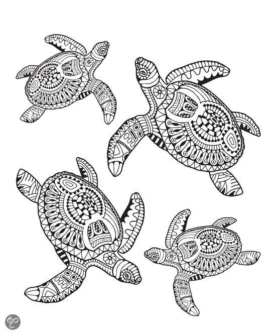 teazel coloring pages for kids - photo#27