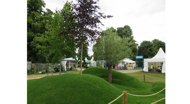 Award Winning Gardens At RHS Hampton Court Supplied By ...