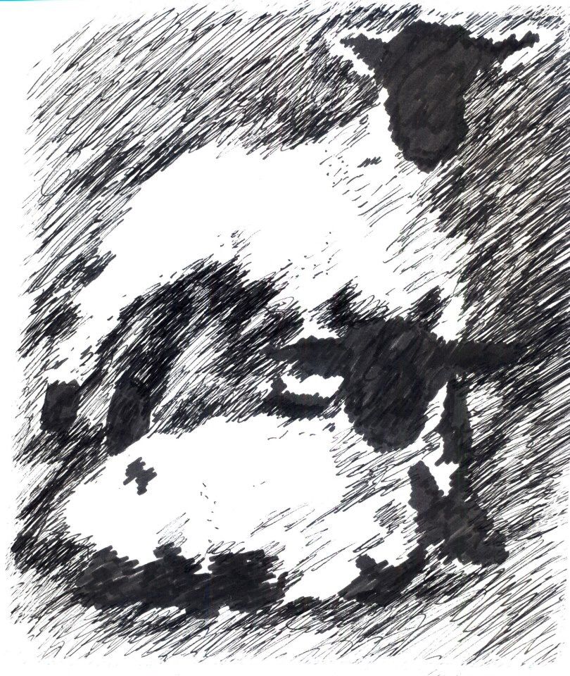 Original sketch - Julie Williamson