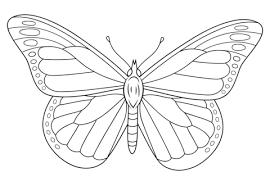 Imagen Relacionada Mariposas Para Colorear Como Dibujar Mariposas Dibujos De Mariposas