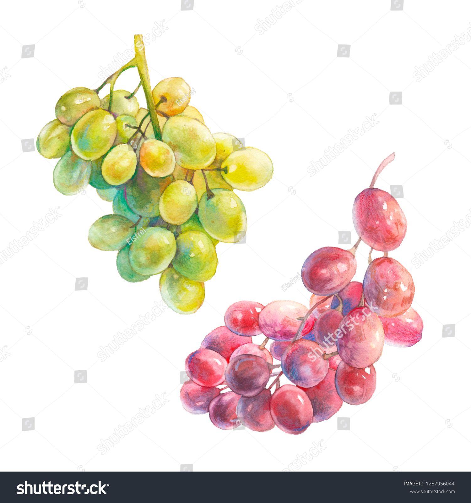 Green grapes-Original artwork-Gouache painting-Watercolor original-Grapes watercolor-Fruits watercolor-Wall art-Green grapes painting-8\u00d710