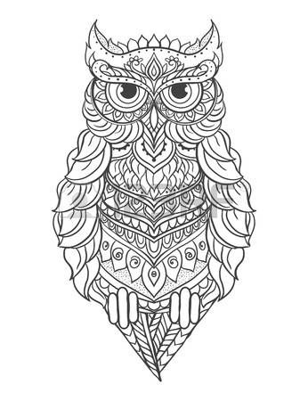 Stock Vector Owl Coloring Pages Cartoon Owl Drawing Owl Vector