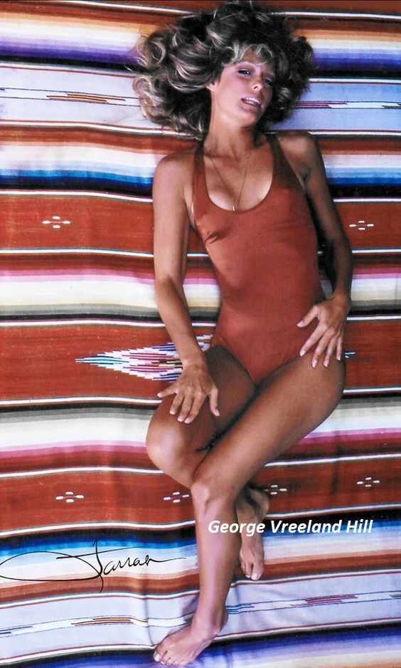 Farrah Fawcett Red Swimsuit Poster. A George Vreeland Hill ...