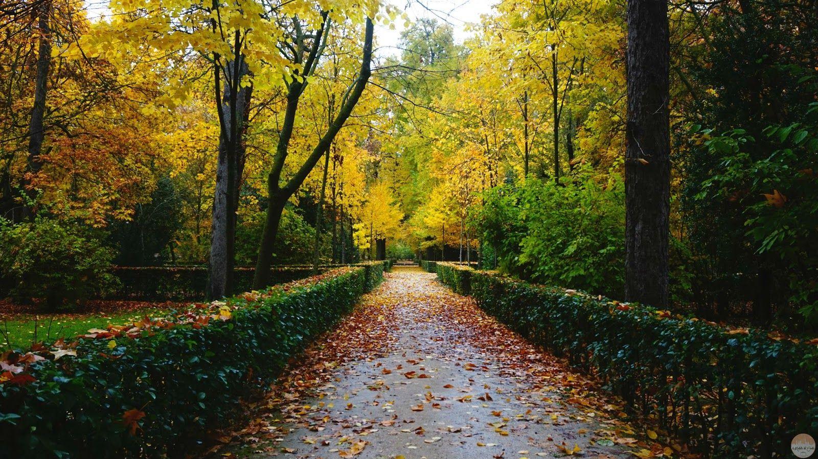 Qué Hacer En Aranjuez En Otoño Visita Al Palacio De Aranjuez Los Jardines Reales Recorrer Aranjuez En Segway Navegar El Tajo En Donde Dormir Viajes Dormido