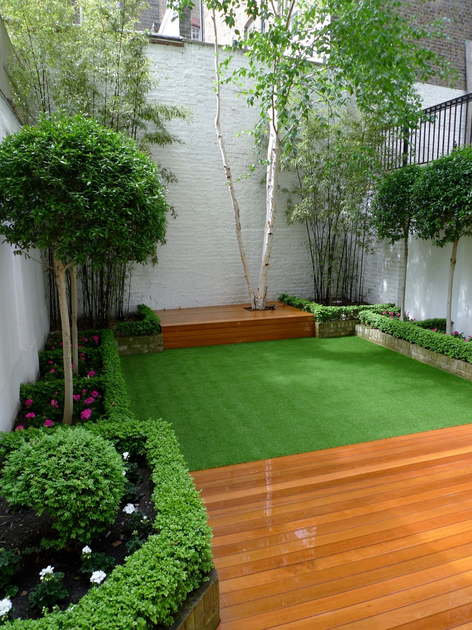 Clean Backyard clean grassy backyard. what a nice place to organize social events