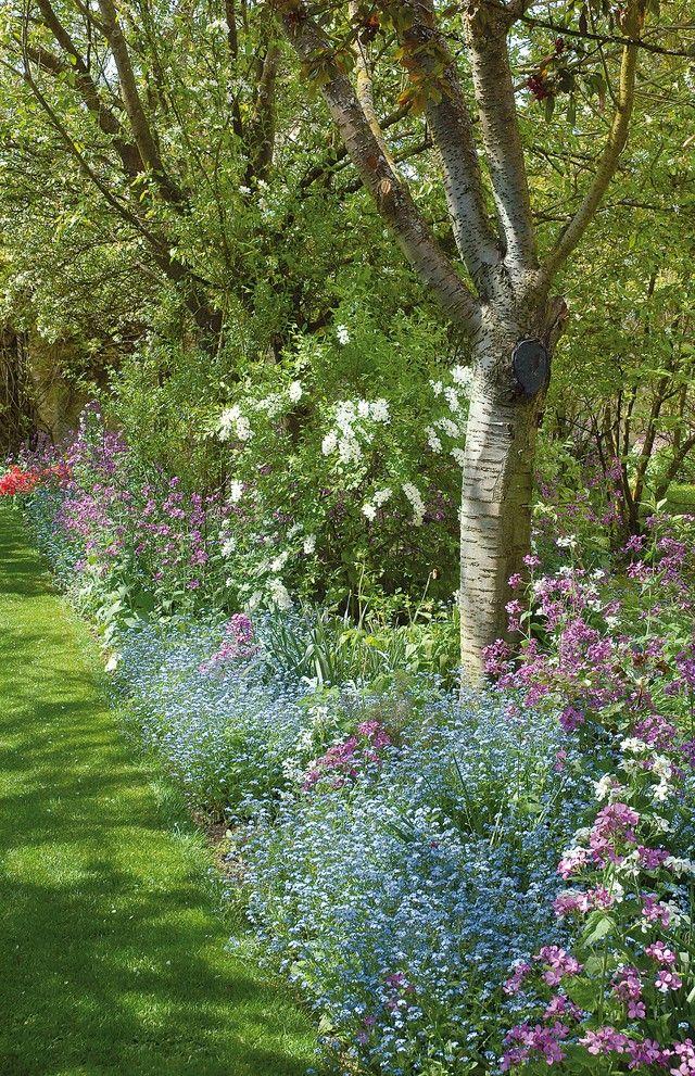 Massif fleuri à l\'ombre des arbres | Type de sol, Types de et Les ...