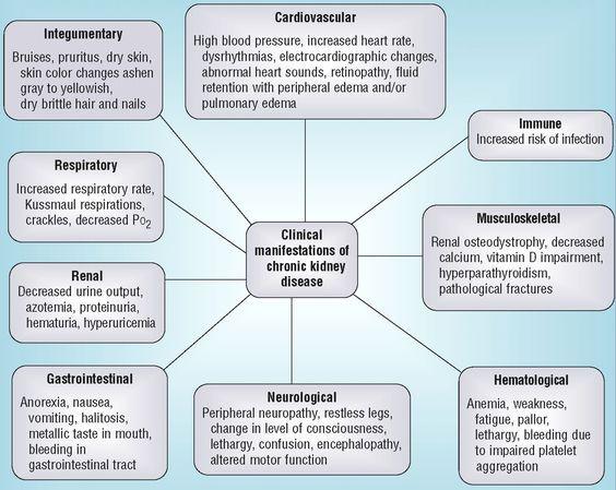 Chronic Renal Failure Figure 2 Clinical Manifestations Of Chronic Kidney Disease Chronic Kidney Disease Chronic Kidney Failure Chronic Renal Failure