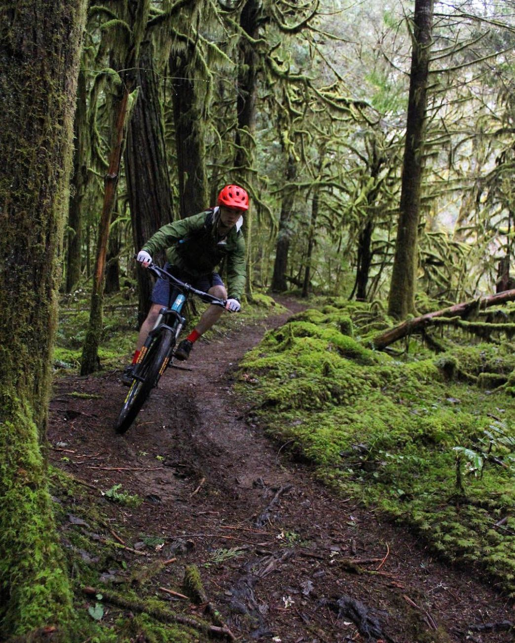 10 Must Ride Mountain Bike Trails In The Us With Images Oregon