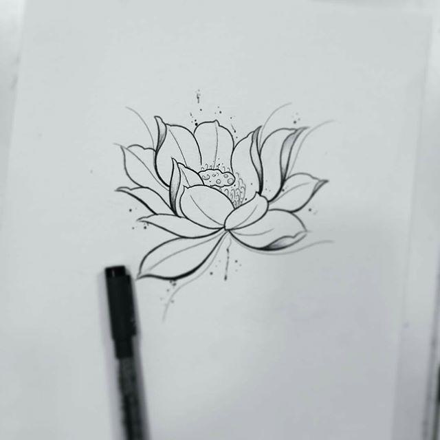 Esboço De Uma Flor De Lotus Desenho Feito Pela