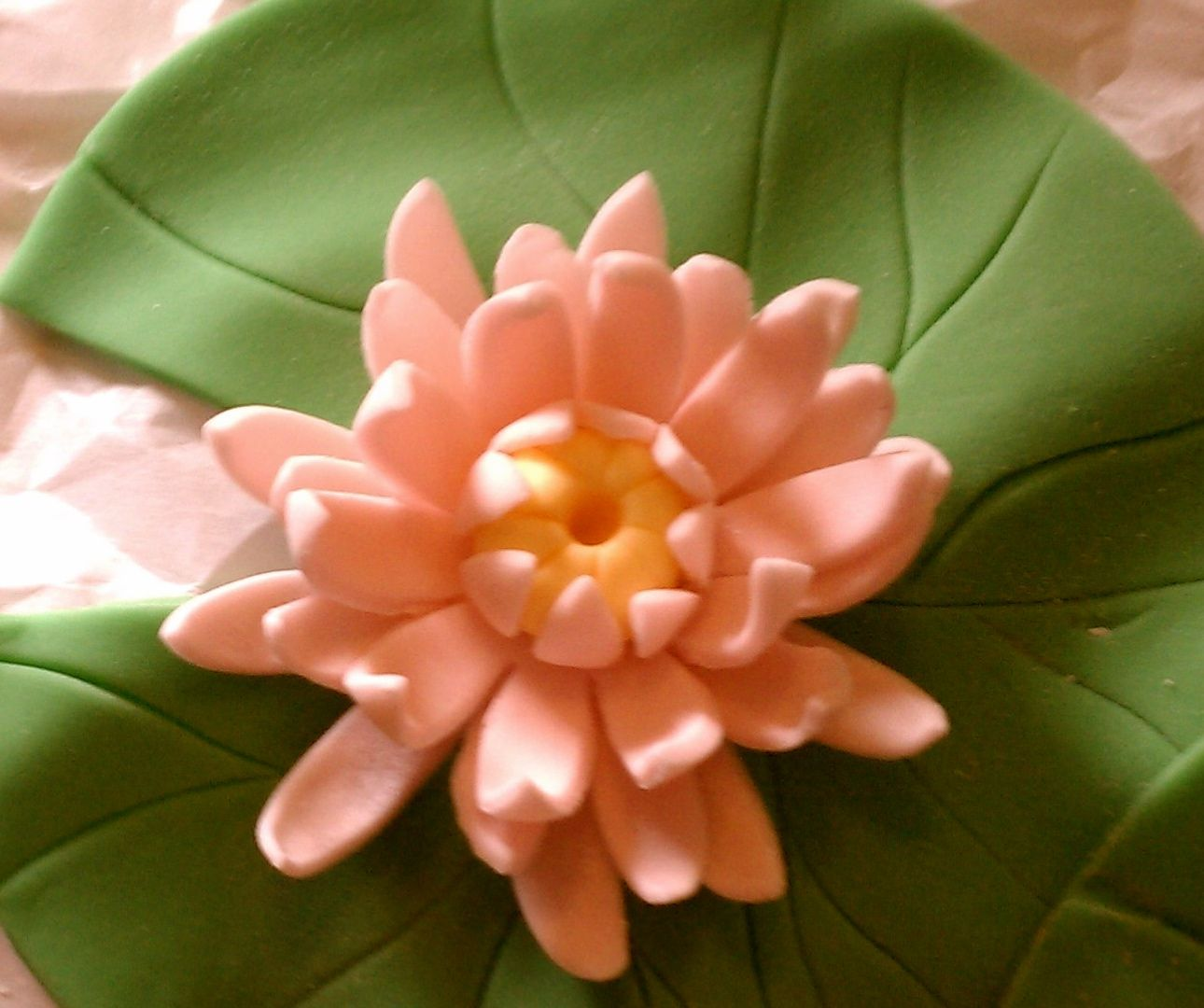 Water lily cake toppers pinterest water lilies sugar paste water lily izmirmasajfo Gallery