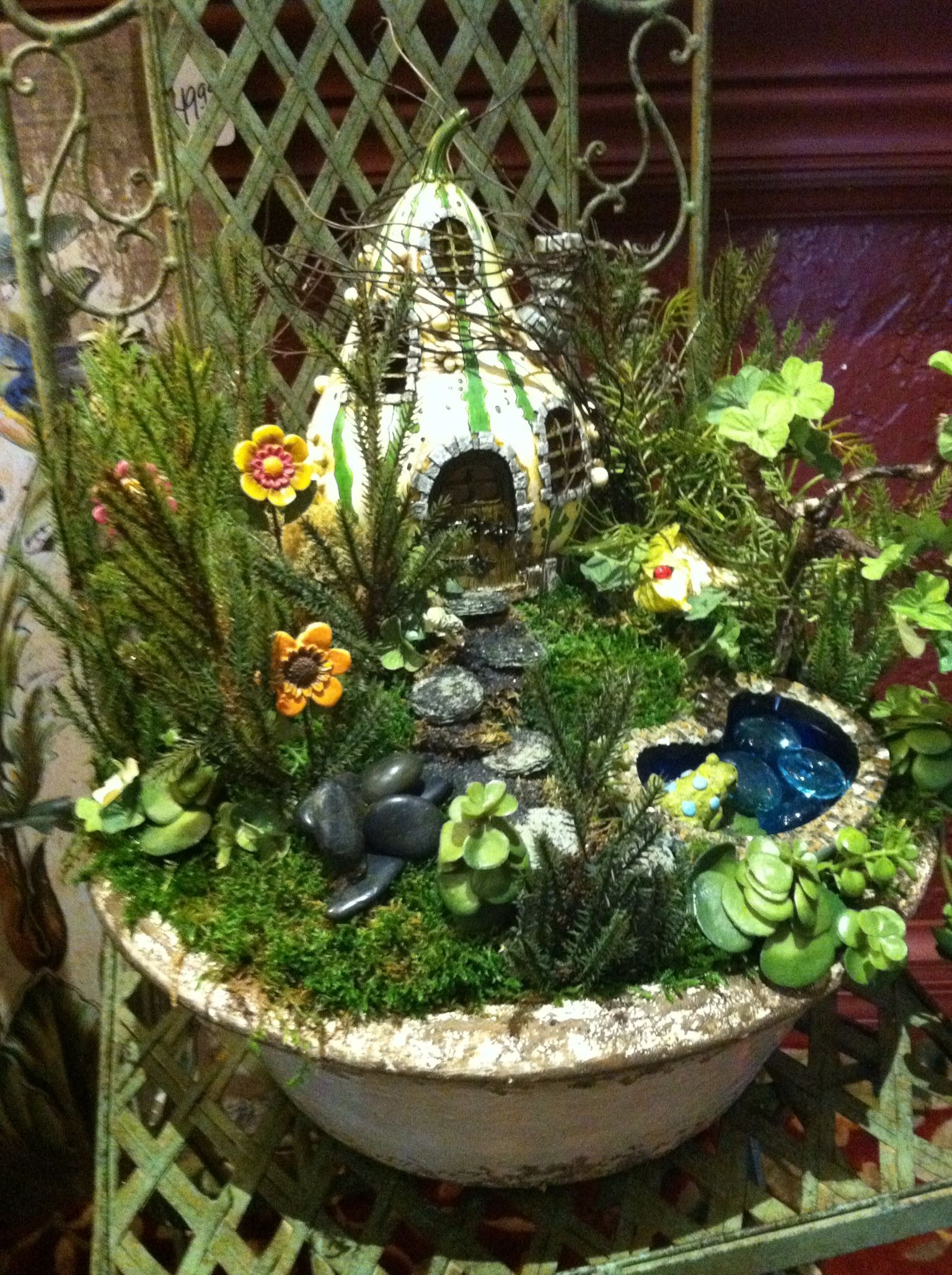 PreMade Fairy Garden at All Occasion & Home Decor' The