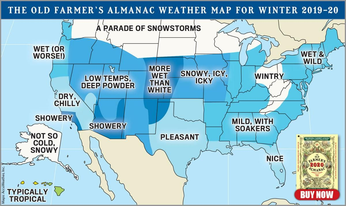 2020 2021 Winter Forecast Winter Weather Forecast Old Farmers Almanac Winter Forecast,Wildflowers That Bloom In The Fall