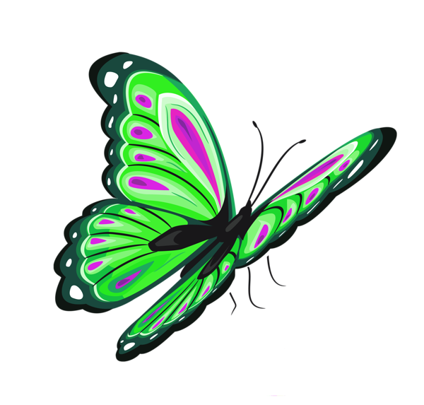 Green And Pink Butterfly Png Clipart Picture Butterfly Clip Art Butterfly Watercolor Butterfly Images