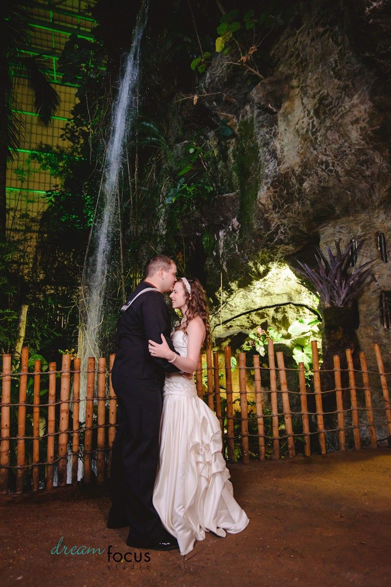 Dallas World Aquarium Wedding Photographer Navy Inspired