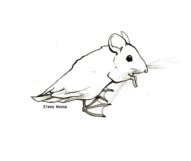 Ratón-pato