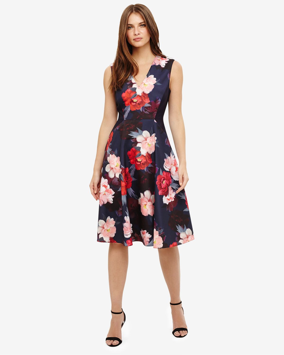 4ef7e04b536e Phase Eight Elba Floral Fit and Flare Dress Blue