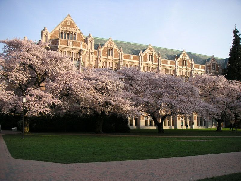 Could I get into the University of Washington in Seattle?