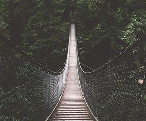 canada suspension bridge
