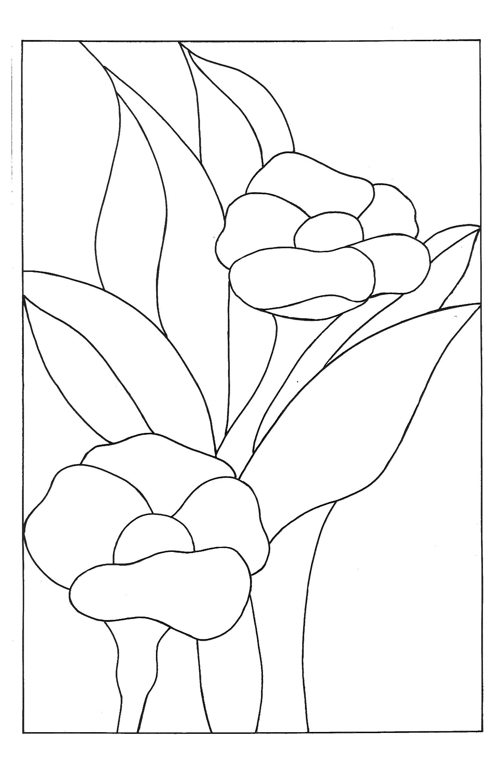 Stained Glass Flower Template … | Pinteres…