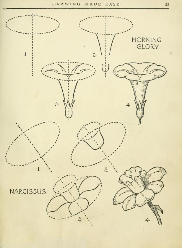 Dessin en toute simplicit un livre utile pour les jeune ar 1888 comment dessiner dessine - Comment dessiner une fleur ...