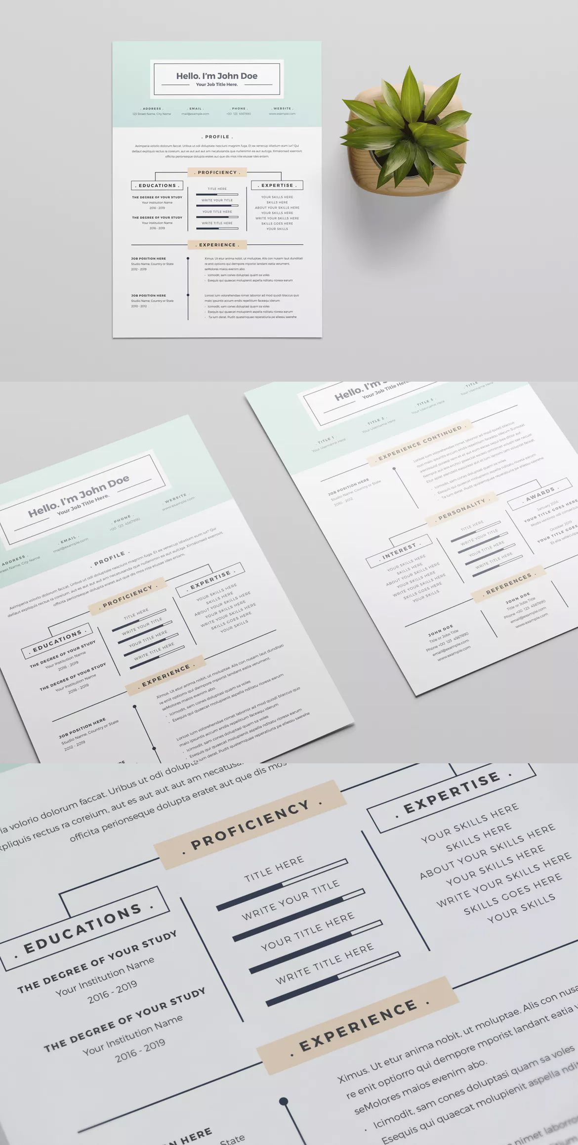 Resume Template InDesign INDD